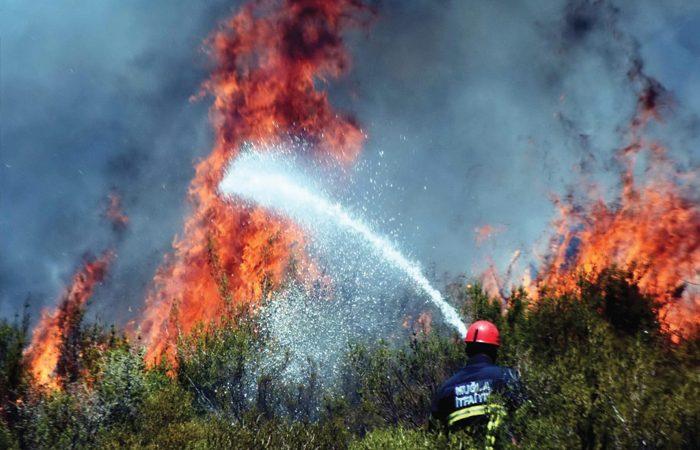 Zirve Yapan Sıcaklar ve Orman Yangınları